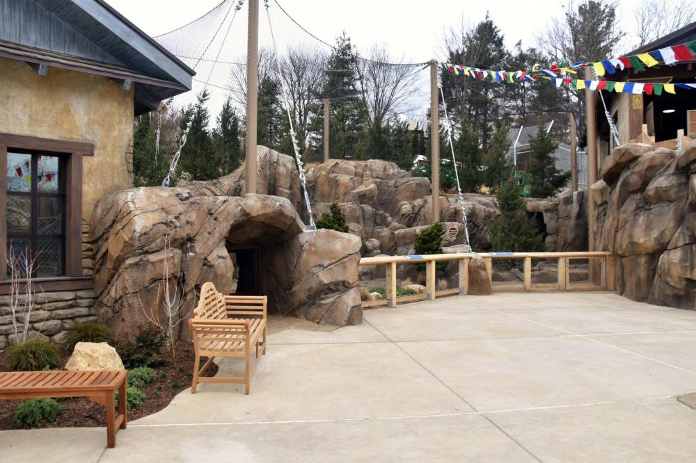 New Snow Leopard Exhibit at the Louisville Zoo featured image